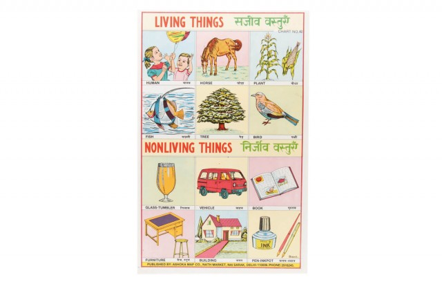 Living Things-Nonliving Things